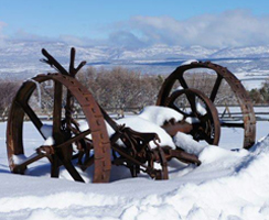 J2F Guest Ranch - Out by the Fence in Winter Time
